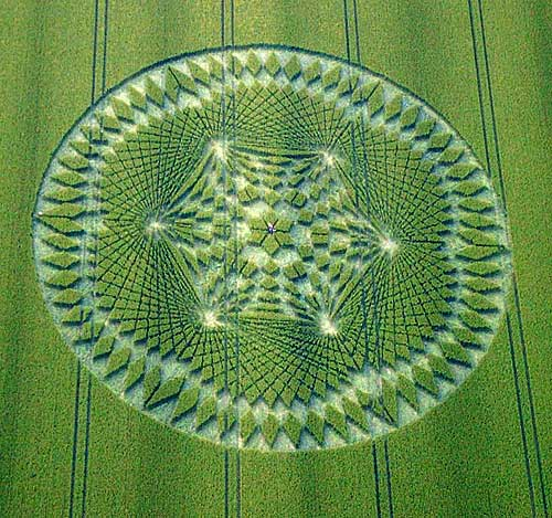Aliens - Do they... don't they? Cropcircledelux
